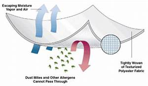 Pristine dust mite allergen barrier mattress cover for Dust mite allergy pillow cover