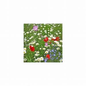 Graines Fleurs Des Champs : jach re fleurs des champs sac de 1 kg 150g de graines et 850 de cosses de sarrasin gamm vert ~ Melissatoandfro.com Idées de Décoration