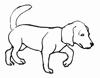 Coloring Dog Pages Fluffy Printable Puppy Getcolorings