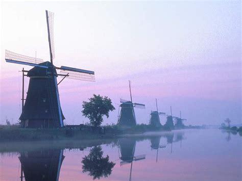keukenhof  netherlands wallpaper