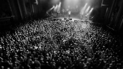 Concert Crowd Wallpapers 1080p Background Backgrounds 4k