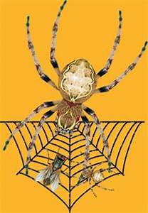 Pinewood Derby Designs Spider Decal For Pinewood Derby Cars