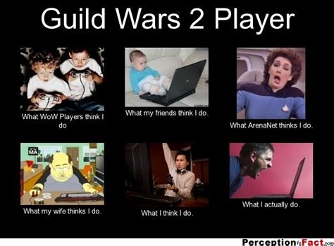 Gw2 Memes - guild wars 2 player what people think i do what i really do perception vs fact
