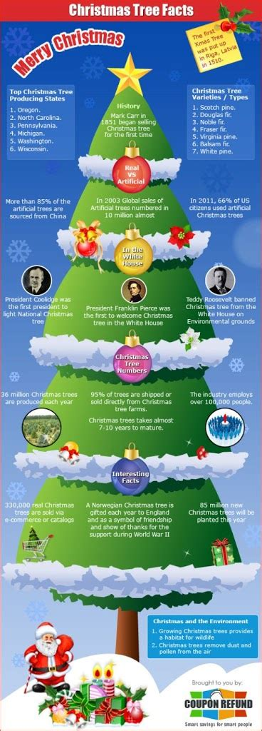 interesting facts about christmas tree gets latest updates