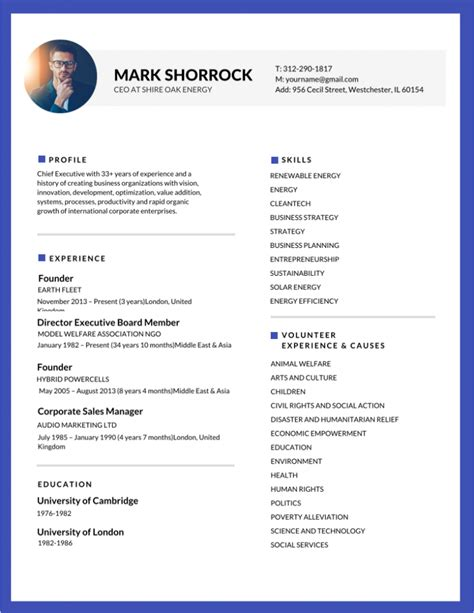 Resume Templae by 50 Most Professional Editable Resume Templates For