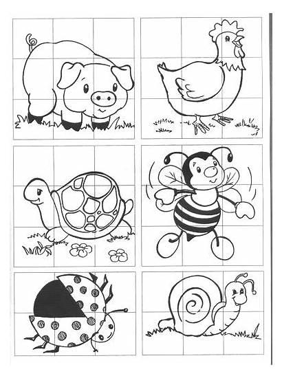 Imprimir Rompecabezas Colorear Infantiles Haya Ampliado Haga