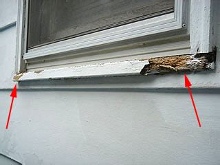 Exterior Vinyl Window Sill by Replace A Wood Window Sill To Fix Rot Damage