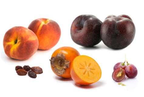 fruits with pits the top 10 foods you should not feed your dog i had no idea 6 was so harmful