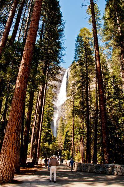 Lower Yosemite Fall Trail Hiking Valley