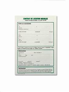 Modele Bail Location Meuble 1 An Document Online