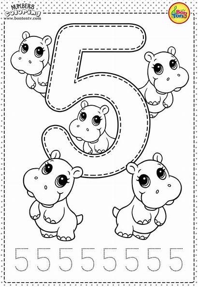 Numbers Brojevi