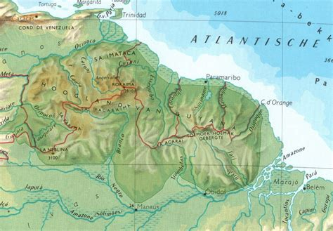 Expeditie Suriname Su 4 Dummies Een Voorbeeld Van Latijn