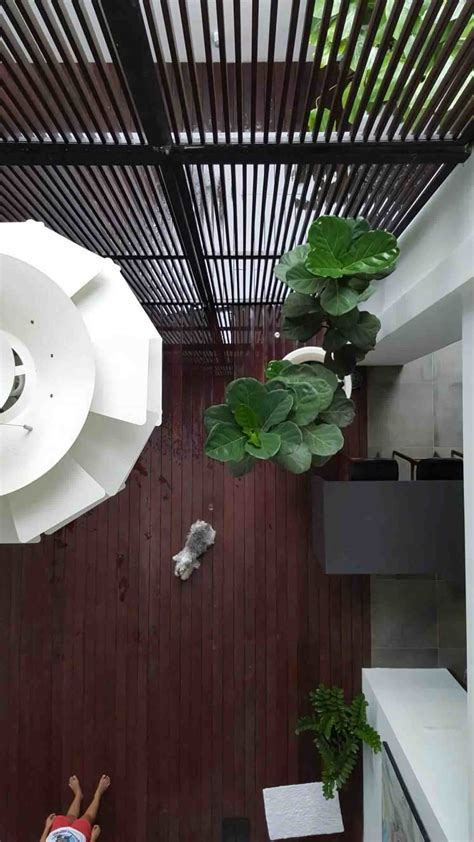 jenis jenis tanaman pelengkap desain interior kekinian