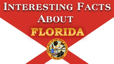 melting pot cuisine facts about florida mental itch
