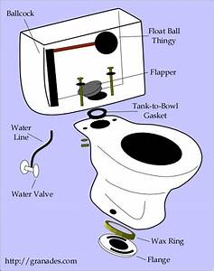 Diagram Toilet
