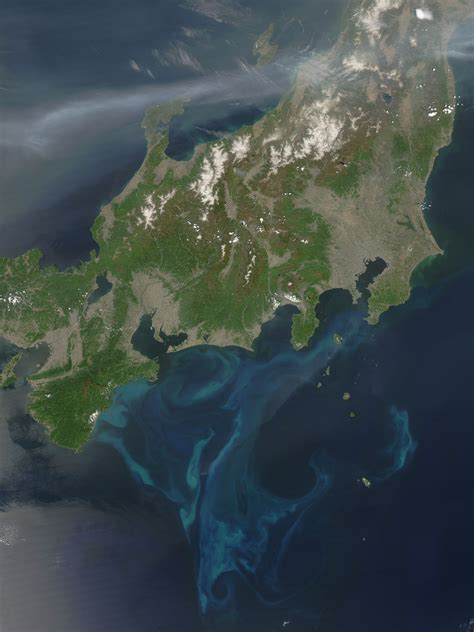 Phytoplankton Bloom Near Japan Image Of The Day