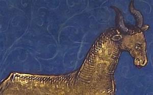 Stier Und Skorpion : die sonne im tierkreiszeichen stier vollmond im skorpion ~ A.2002-acura-tl-radio.info Haus und Dekorationen