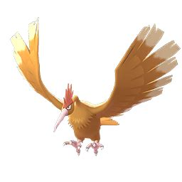 fearow pokemon   movesets counters evolutions