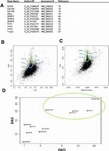 Guide Genes Used In This Study  A  Gene Names  Agilent