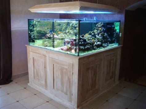 magasin d aquarium en belgique quoi de neuf aquatic concept