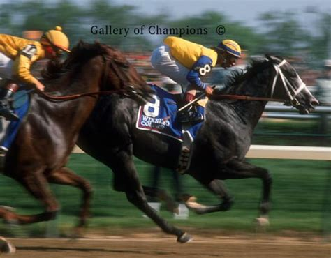 kentucky derby winning colors  gallery  champions