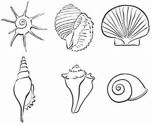 Comment Dessiner La Mer : comment dessiner des animaux facilement cool comment dessiner des animaux facilement with ~ Dallasstarsshop.com Idées de Décoration