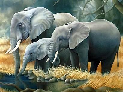 Animals Trash Elephants 3d Everyone
