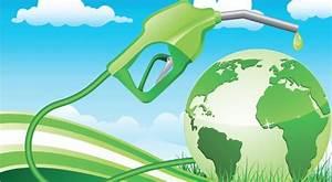 Biofuel biodiesel - Automotive Blog