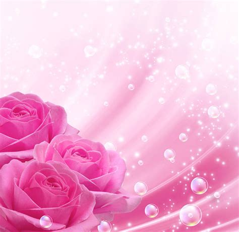 Pink Roses Background Pink Background With Pink Roses Gallery Yopriceville