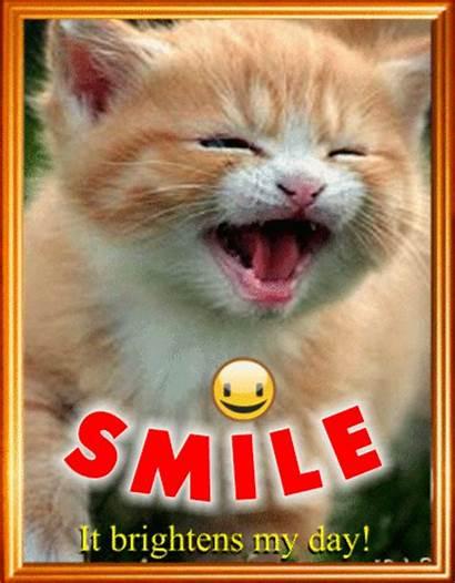 Smiling Kitty Smile Month Greeting Greetings Ecard