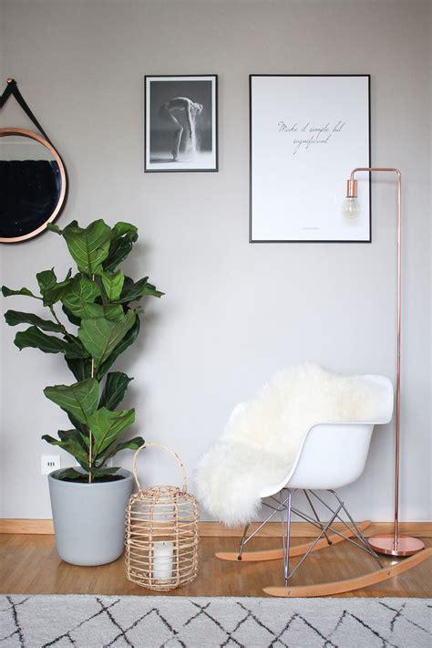 pflanzen für wohnung diese 5 zimmerpflanzen verwandeln deine wohnung in eine