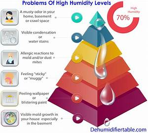 How To Lower Humidity In House  Family Safe Humidity