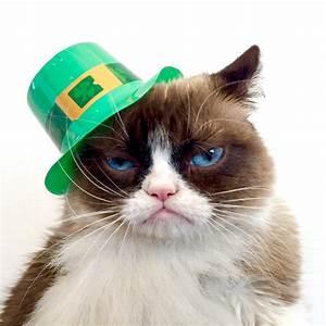 Happy Saint Patrick's Day | Grumpy Cat®