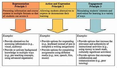 Udl Universal Principles Learning Environment Module Legacy
