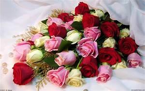 Rose Bouquet wallpaper 162780