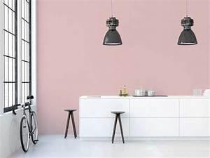 Cuisine Rose Poudré : peinture les couleurs tendance 2016 vues par 1825 ~ Melissatoandfro.com Idées de Décoration