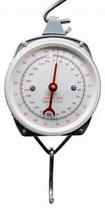 Lineaeffe 100kg 220lb Spring Balance Scales  U2013 Glasgow
