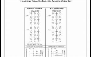 12 Lead Fire Pump Help - Electrician Talk