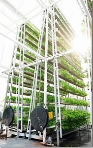 Urban Gardening Definition : vertical farming singapore 39 s solution to feed the local urban population ~ Eleganceandgraceweddings.com Haus und Dekorationen