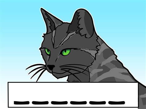 How To Create A Warrior Cats Oc 6 Steps With Pictures Wikihow