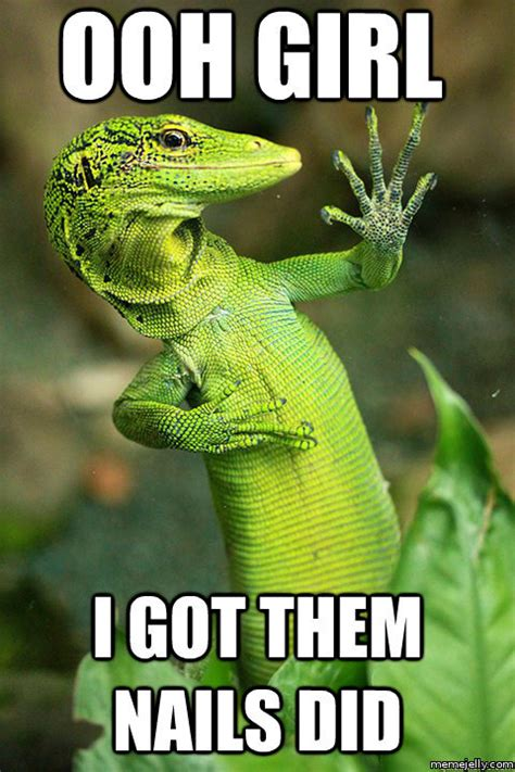 Lizard Meme - fabulous memes image memes at relatably com