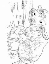 Coloring Desenhos Buffalo Water Recentes Bufalos Mais Library Bufalo Popular Colorir Asiatico sketch template
