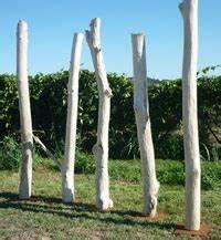 Tronc Bois Flotté : tronc bois flott achat vente de troncs de bois flott ~ Dallasstarsshop.com Idées de Décoration