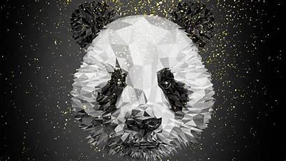 Panda 4k Wallpapers Poly Low Bear Lowploy