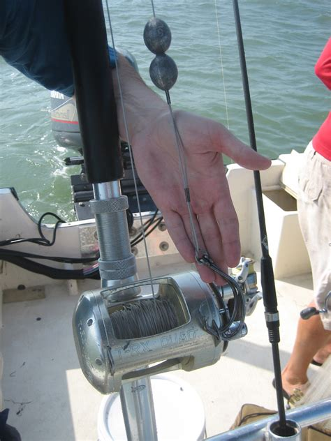 grouper pound myers ft goliath wrecks key any west reply