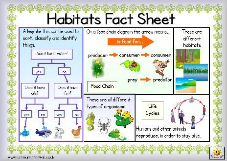 The term habitat3 forms a core concept in wildlife management and the distribution of plant and animal species. 24 best images about 3rd Grade Science-Habitats ...