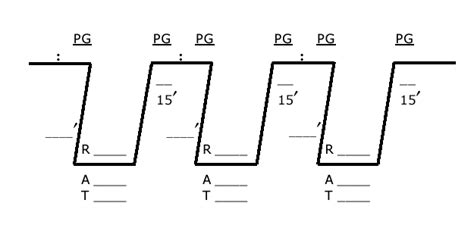dive profile worksheet rdp practice problems