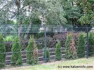 Holzeingangstüren Mit Glas : zaun 2m hoch betonzaun gespaltete stein classic l 200 cm h 200cm b 4 5 cm edelstahl zaun expert ~ Sanjose-hotels-ca.com Haus und Dekorationen