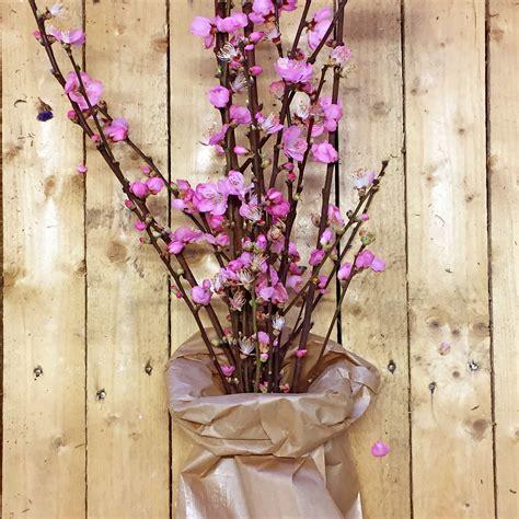 rami di fiori bouquet rami di pesco mazzo di fiori flority fair