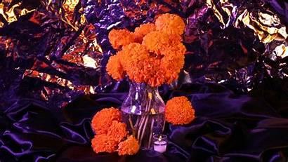 Muertos Dia Remezcla Altar Ofrendas Flores Own